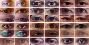 In ogni coppia di occhi, nell'immagine di sinistra l'occhio guarda in una direzione qualsiasi, nell'immagine di destra viene corretta la direzione