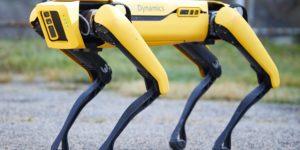 Spot di Boston Dynamics arriva sul mercato