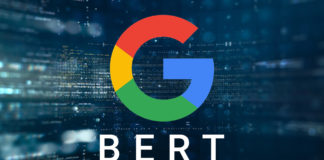Google Bert. Credits:searchengineland.com