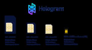L'evoluzione delle SIM negli anni. Credit: Hologram.io