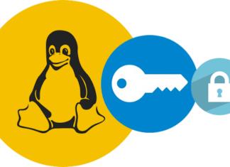 Vulnerabilità VPN. Credits: threatpost.com