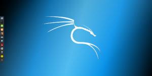Il 2020 inizia con grandi novità per la distro Kali Linux