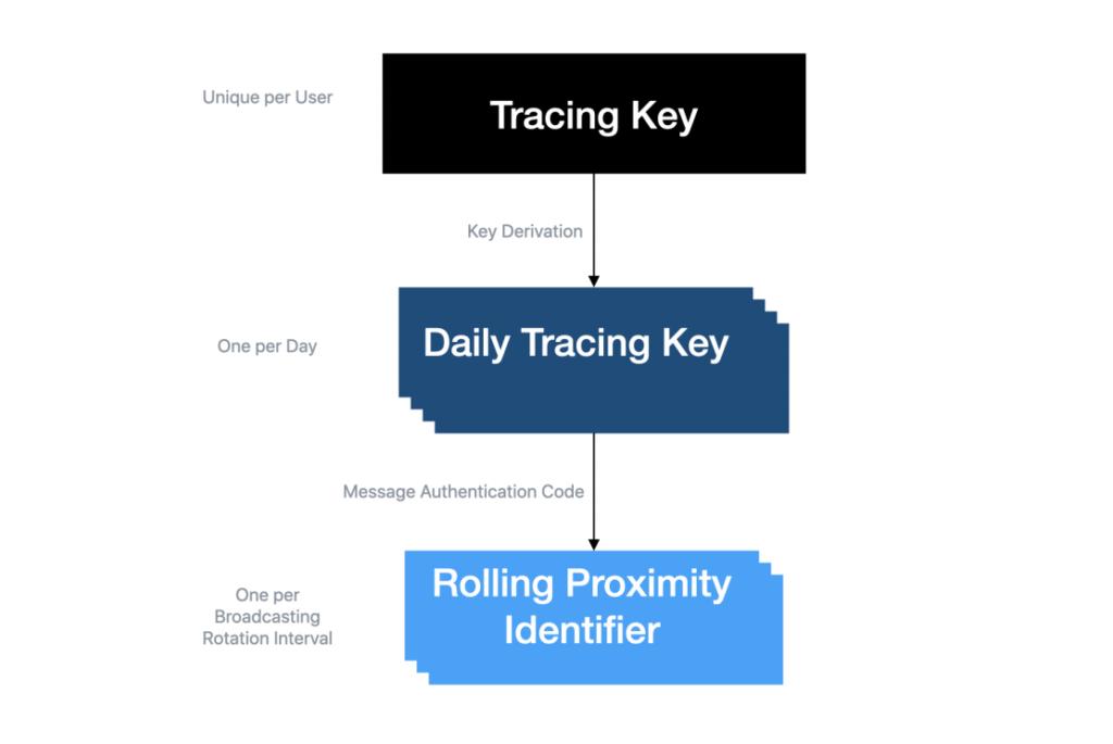 Il rolling proximity identifier viene calcolato a partire dal Daily Tracing Key o Temporary Exposure Key. Credits: medium.com