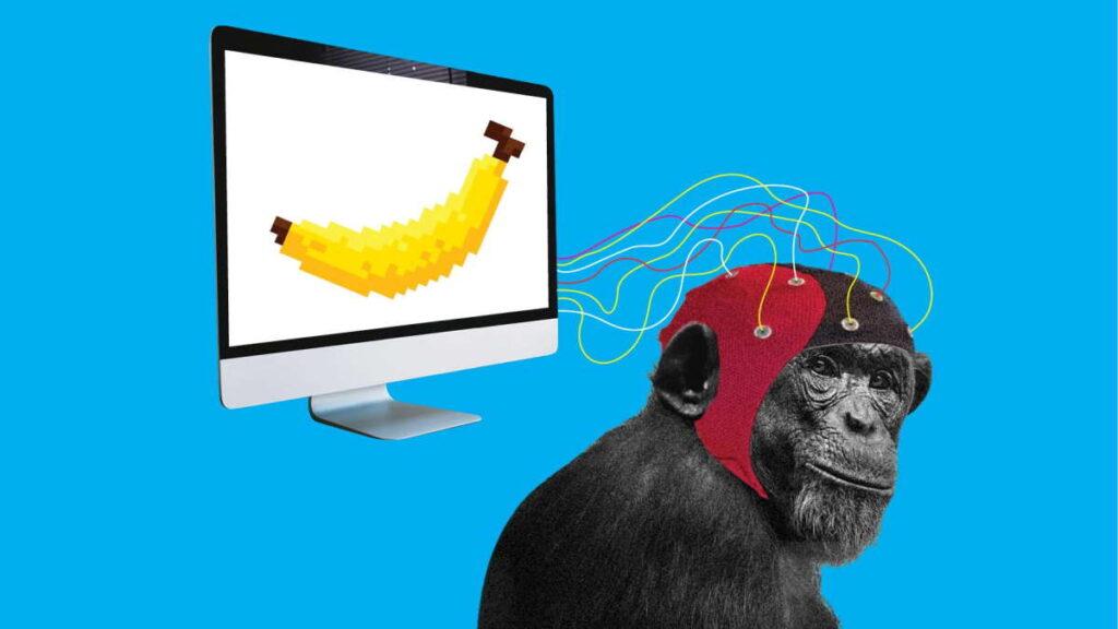 Elon Musk e Neuralink: una scimmia gioca ai videogiochi con la mente