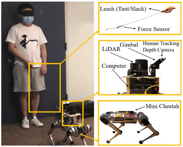 Nell'immagine è possibile vedere tutti i dettagli del sistema di guida composto dall'umano, il robot (Mini Cheetah) e il guinzaglio. Inoltre, in figura sono rappresentati anche il sensore di forza, utilizzato dal guinzaglio per monitorare la tensione esercitata su di esso dal cane, e tutti gli altri sensori impiegati dal robot per orientarsi nello spazio. Fonte: Hybrid Robotics Group, UC Berkeley University.