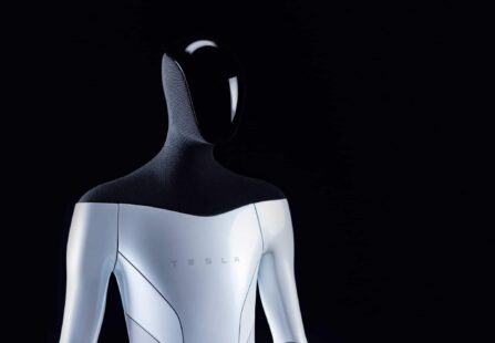 Tesla Bot: il robot umanoide di Elon Musk sarà costruito entro un anno